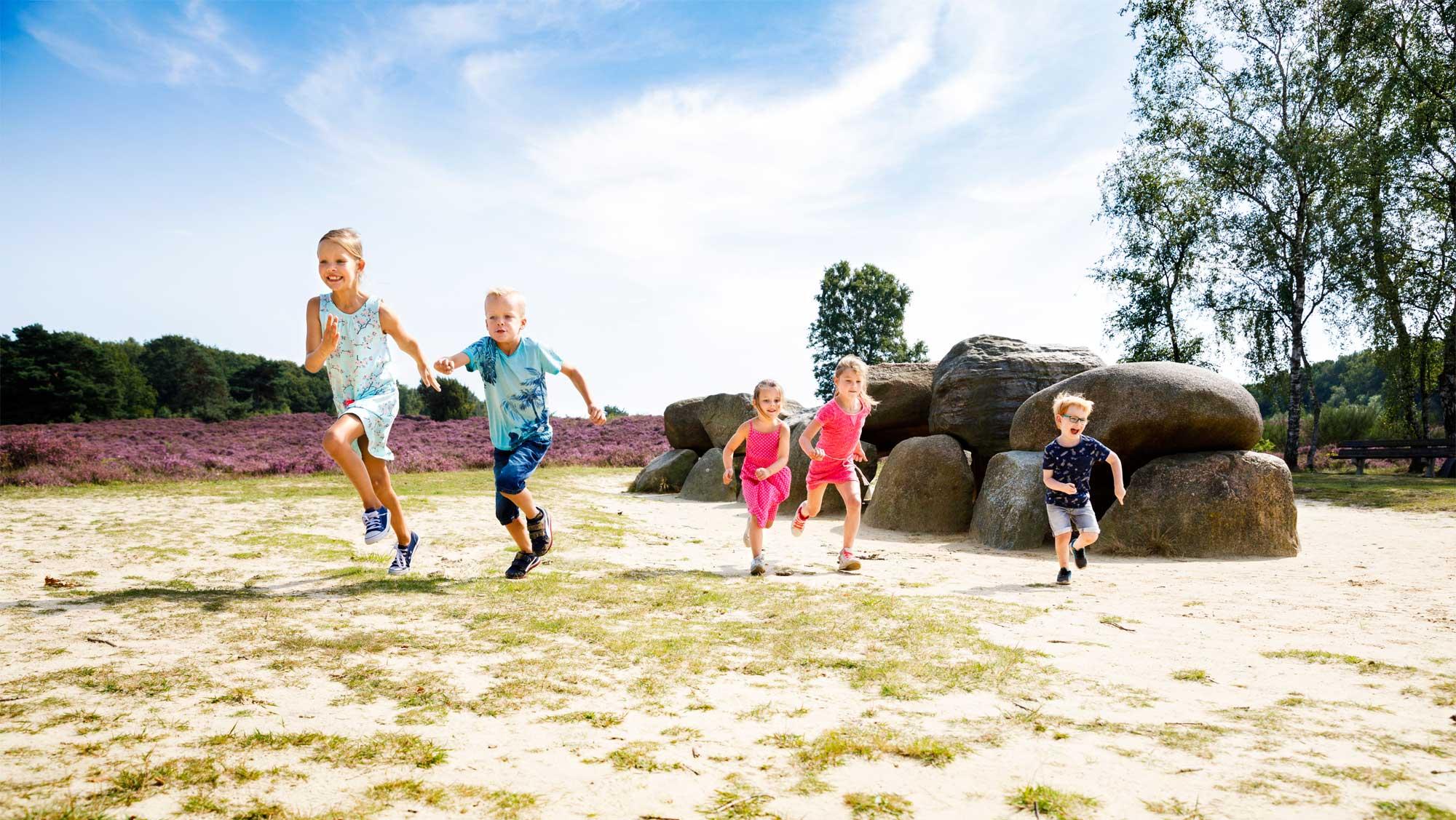 Omgeving Molecaten Park Kuierpad Drenthe 05 hunebed