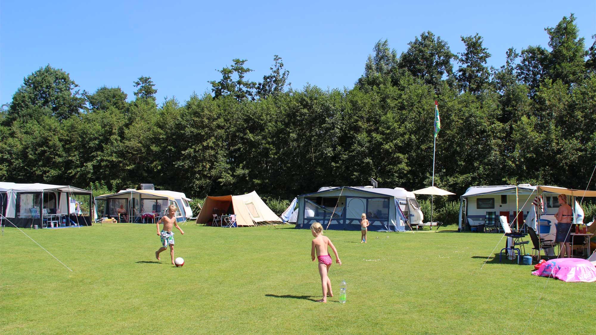 Comfortplaats kamperen huisdierveld Molecaten Park Flevostrand 02
