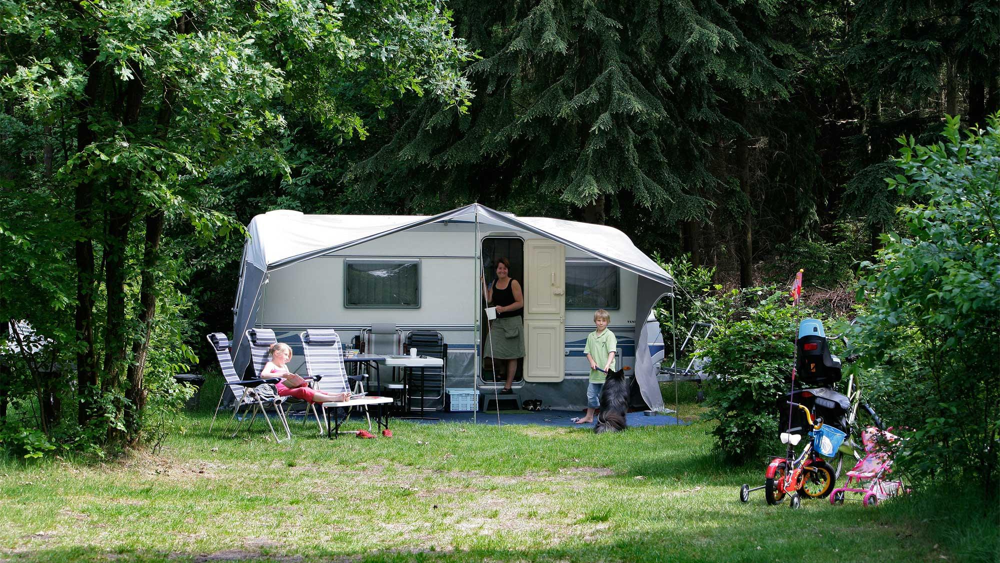 Basisplaats kamperen Molecaten Park Landgoed Molecaten 11