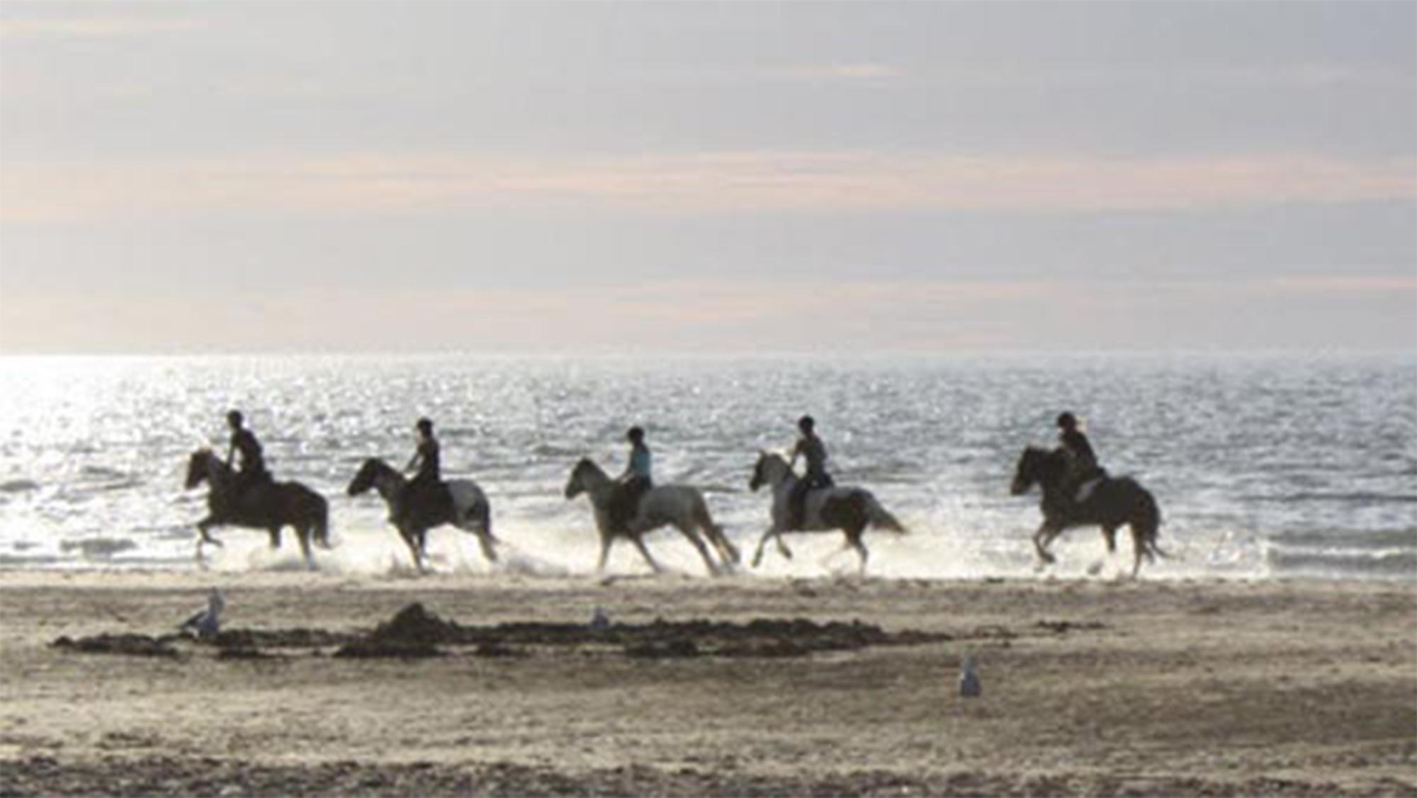 Paardrijden_op_het_strand
