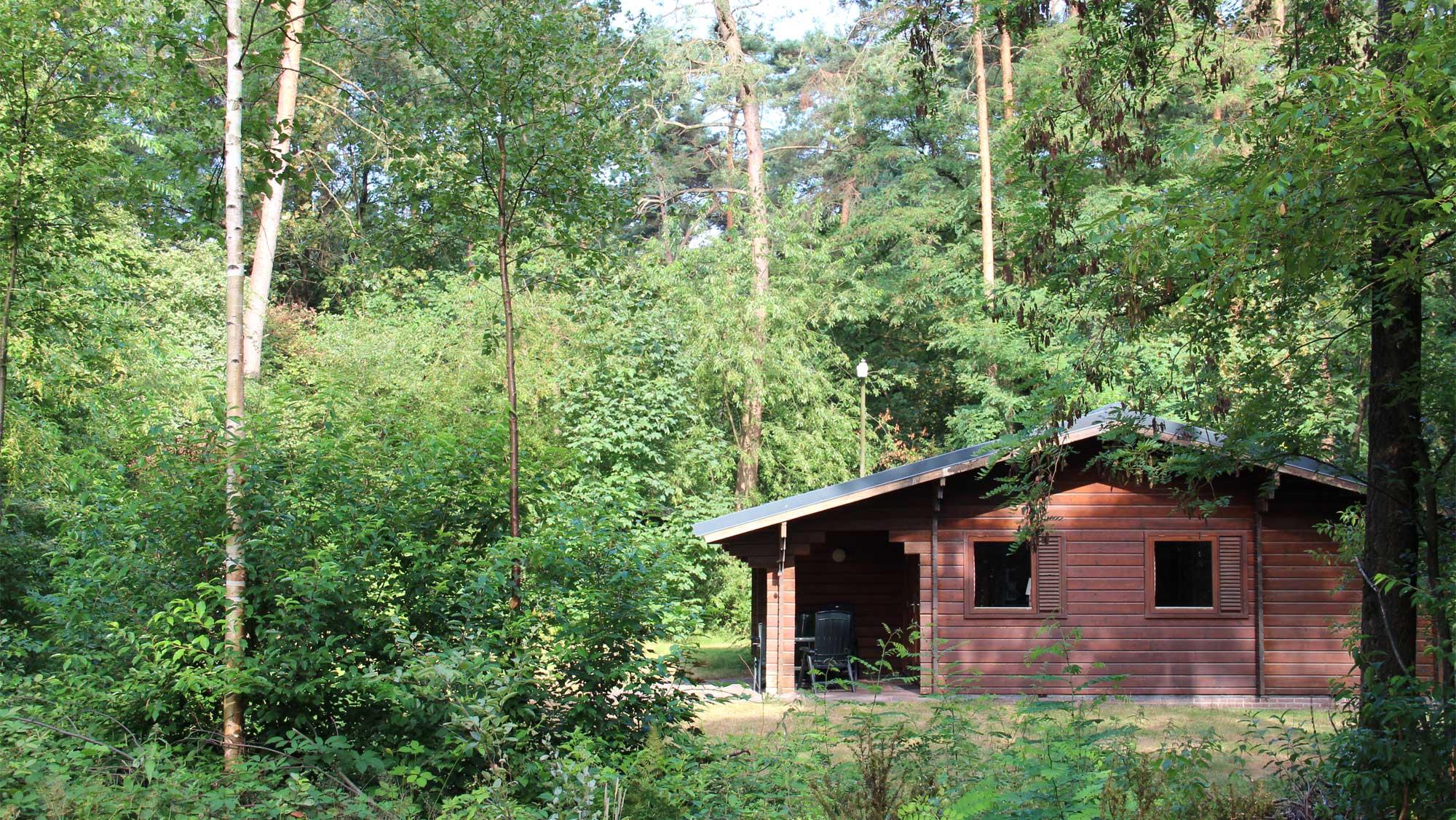 4pers bungalow Finse Molecaten Park Landgoed Ginkelduin 03