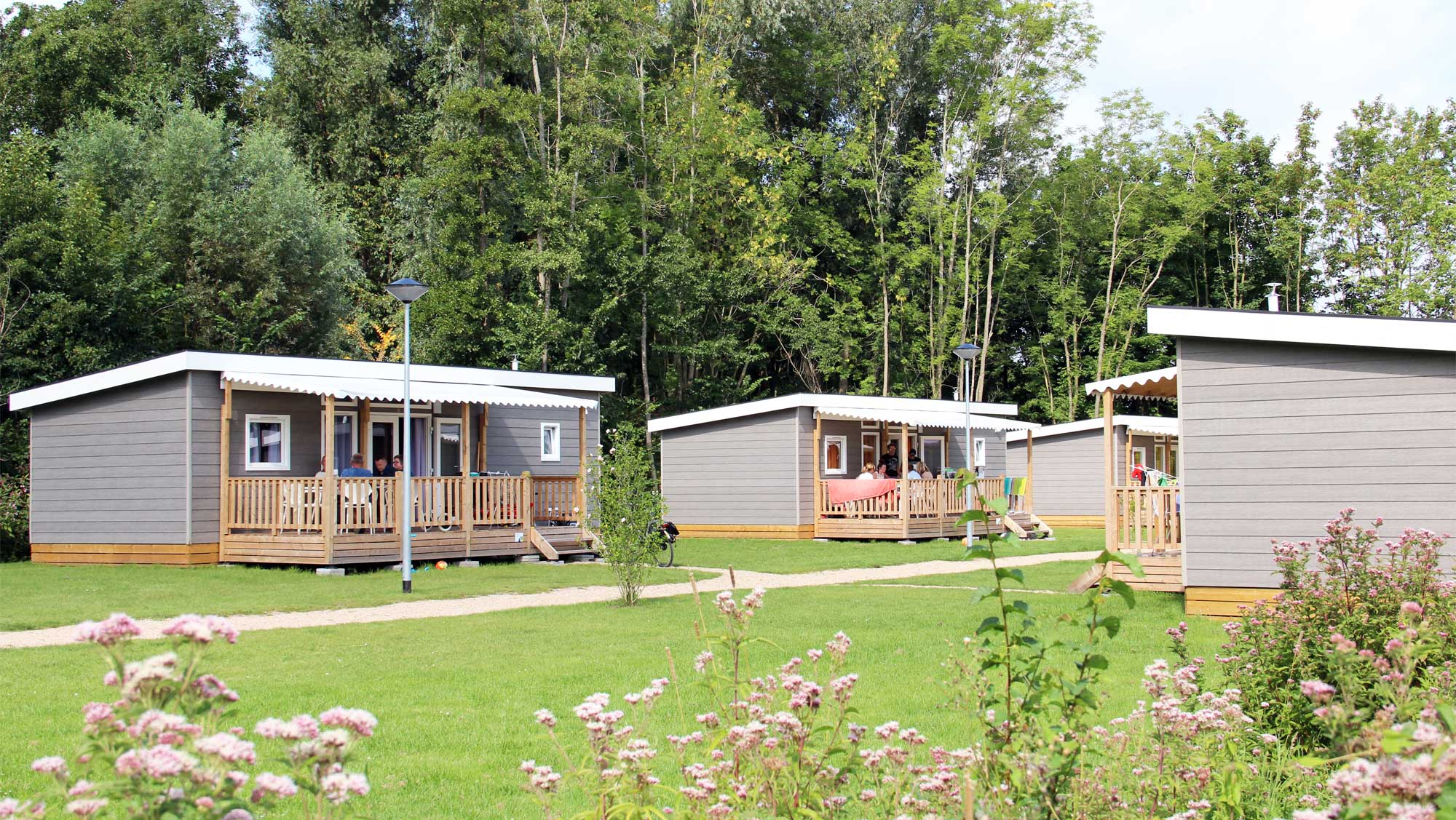 6pers chalet Pimpernel Molecaten Park Rondeweibos 01