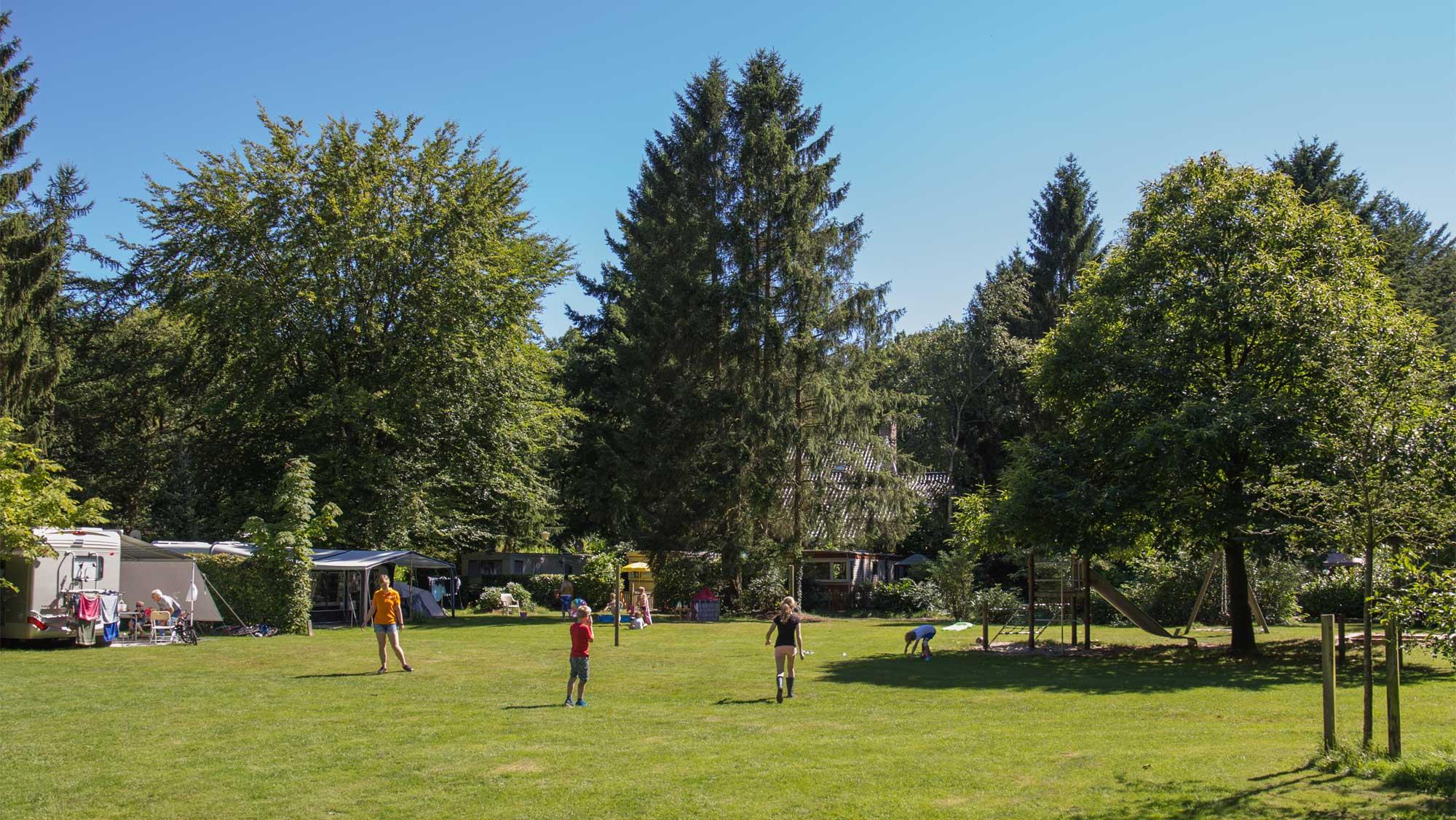 Basisplaats kamperen Molecaten Park Landgoed Molecaten 06