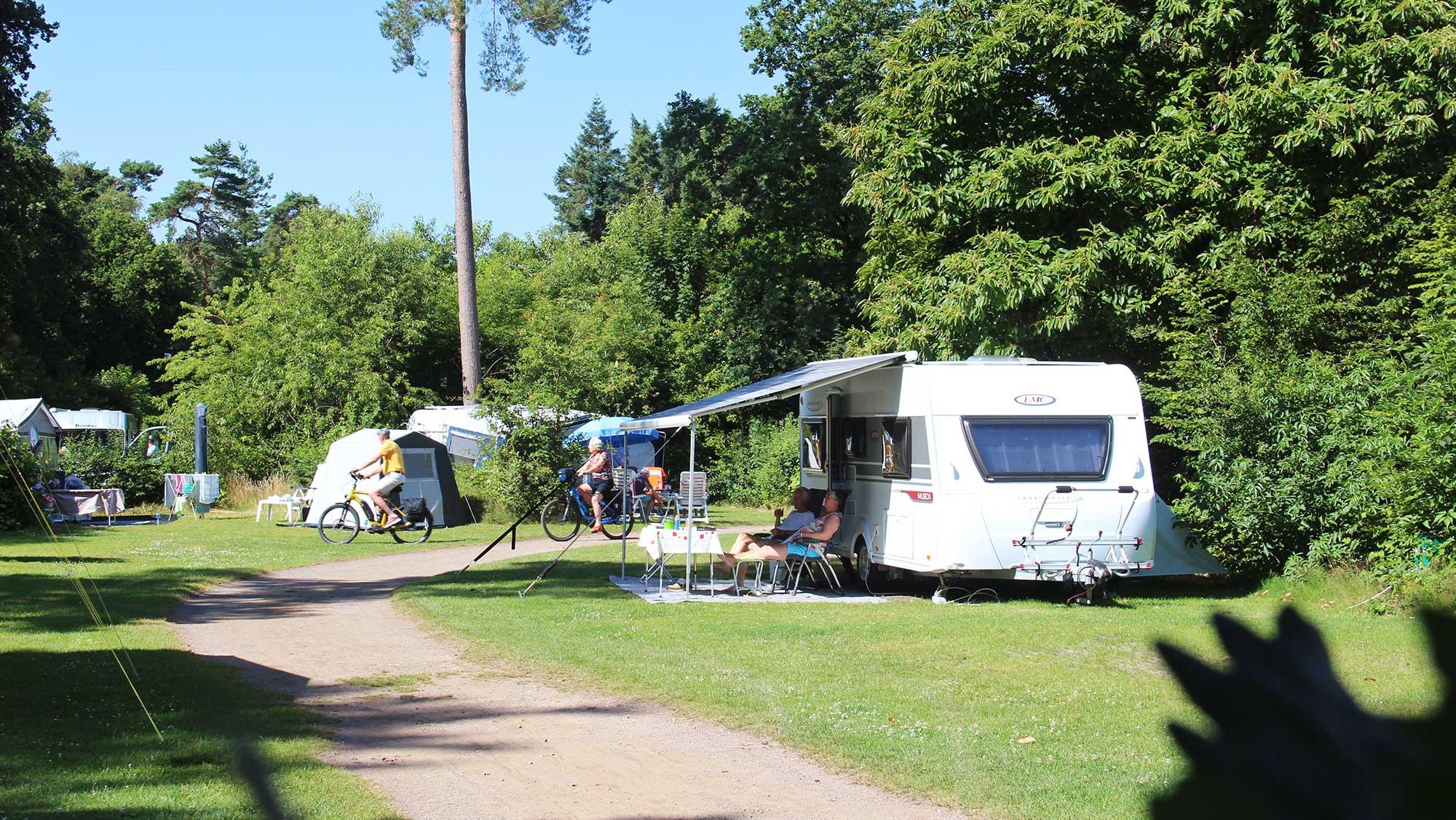 Comfortplaats kamperen Molecaten Park Landgoed Ginkelduin 03