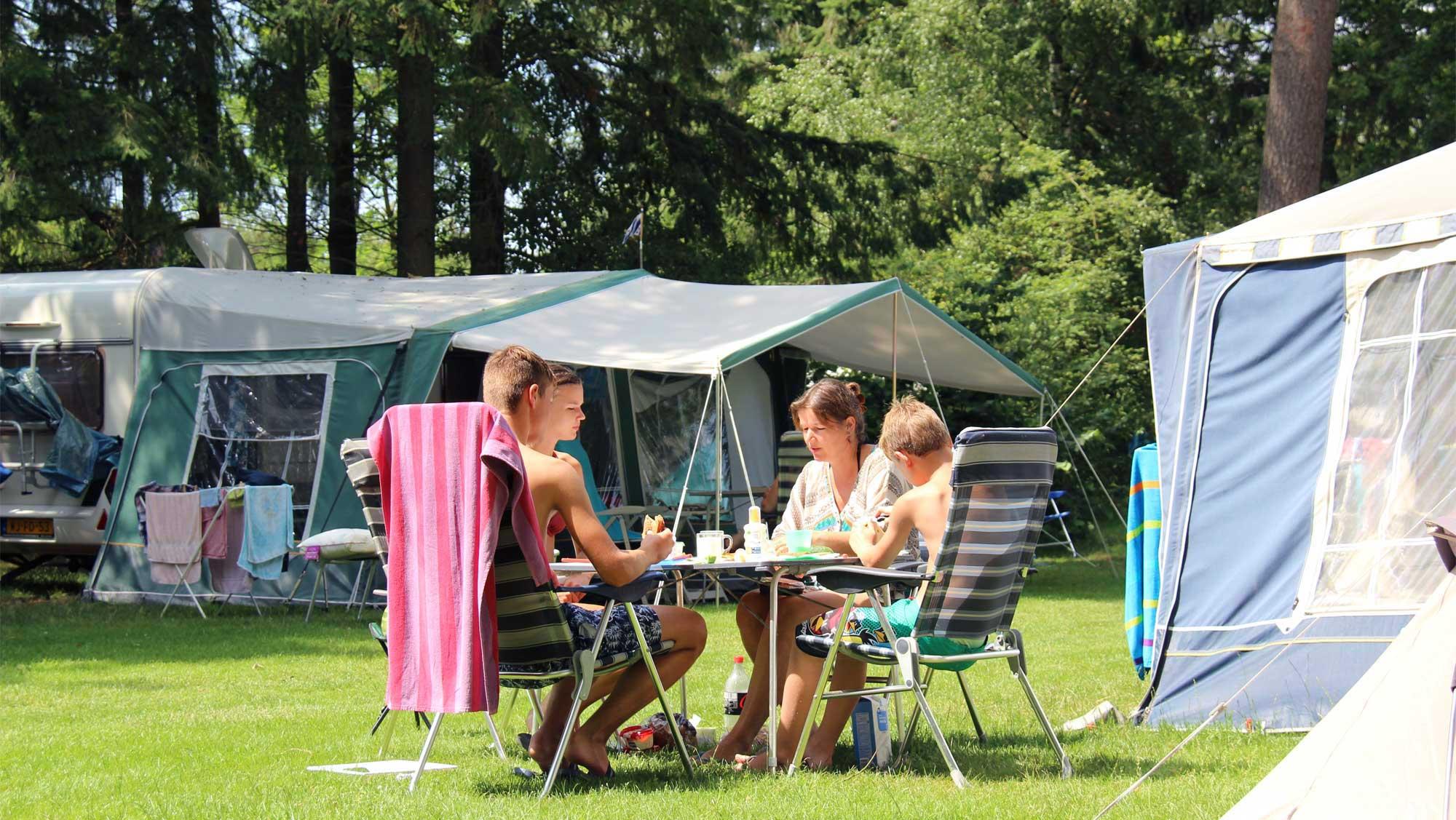 Comfortplaats kamperen Molecaten Park Landgoed Ginkelduin 05