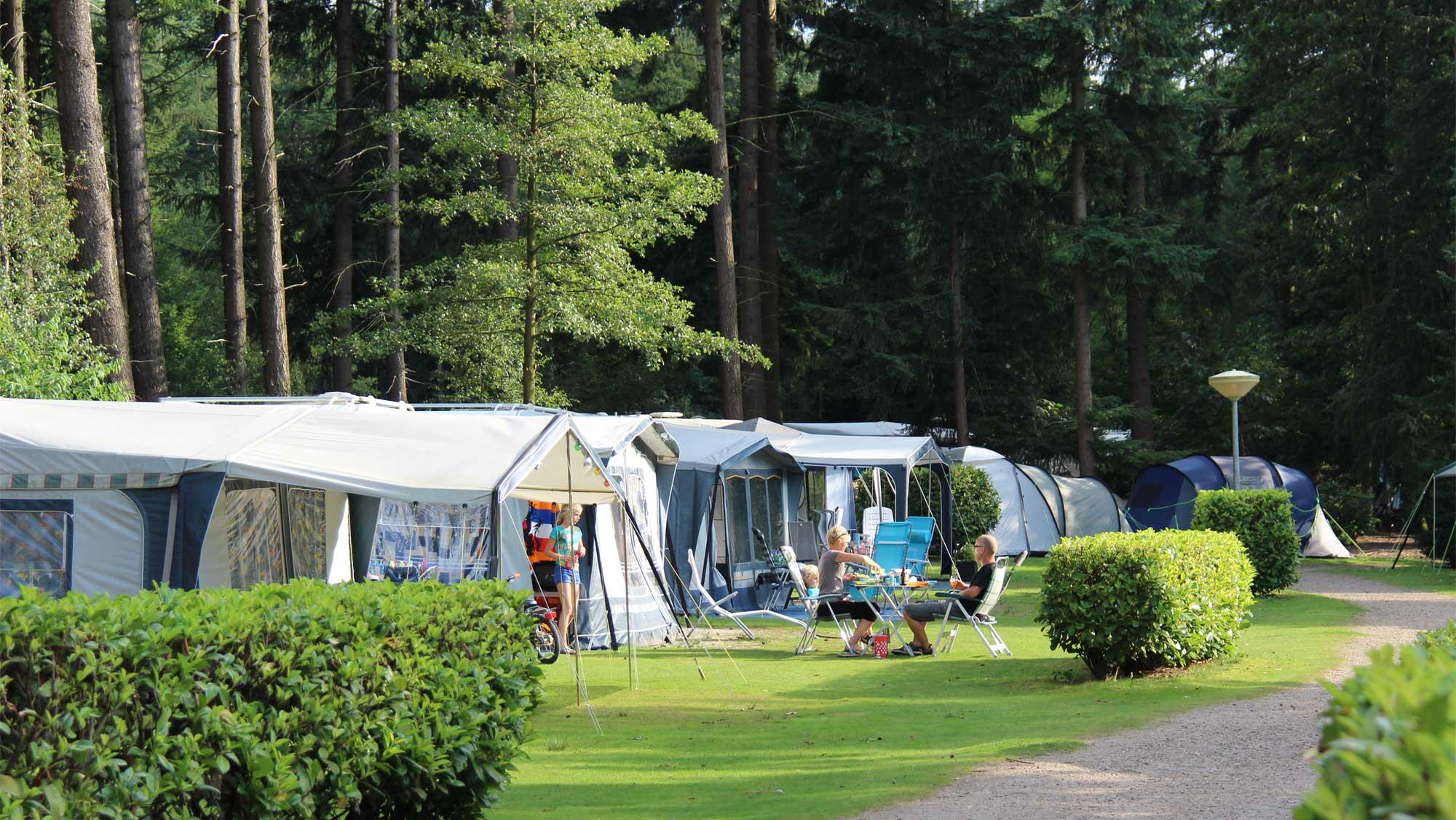 Comfortplaats kamperen Molecaten Park De Leemkule 02
