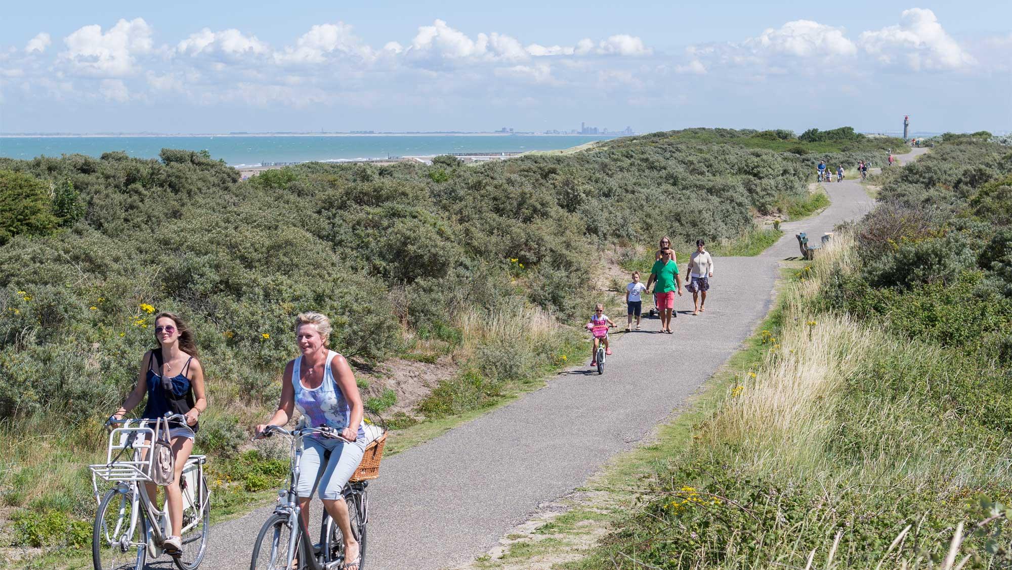 Omgeving Molecaten Park Hoogduin 04 strand zeeland