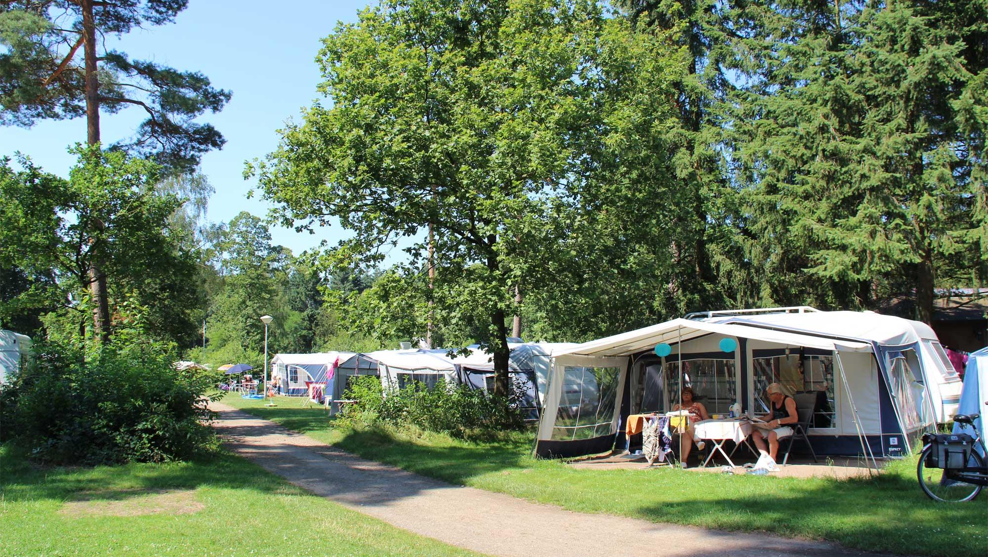 Comfortplaats kamperen Molecaten Park Landgoed Ginkelduin 09