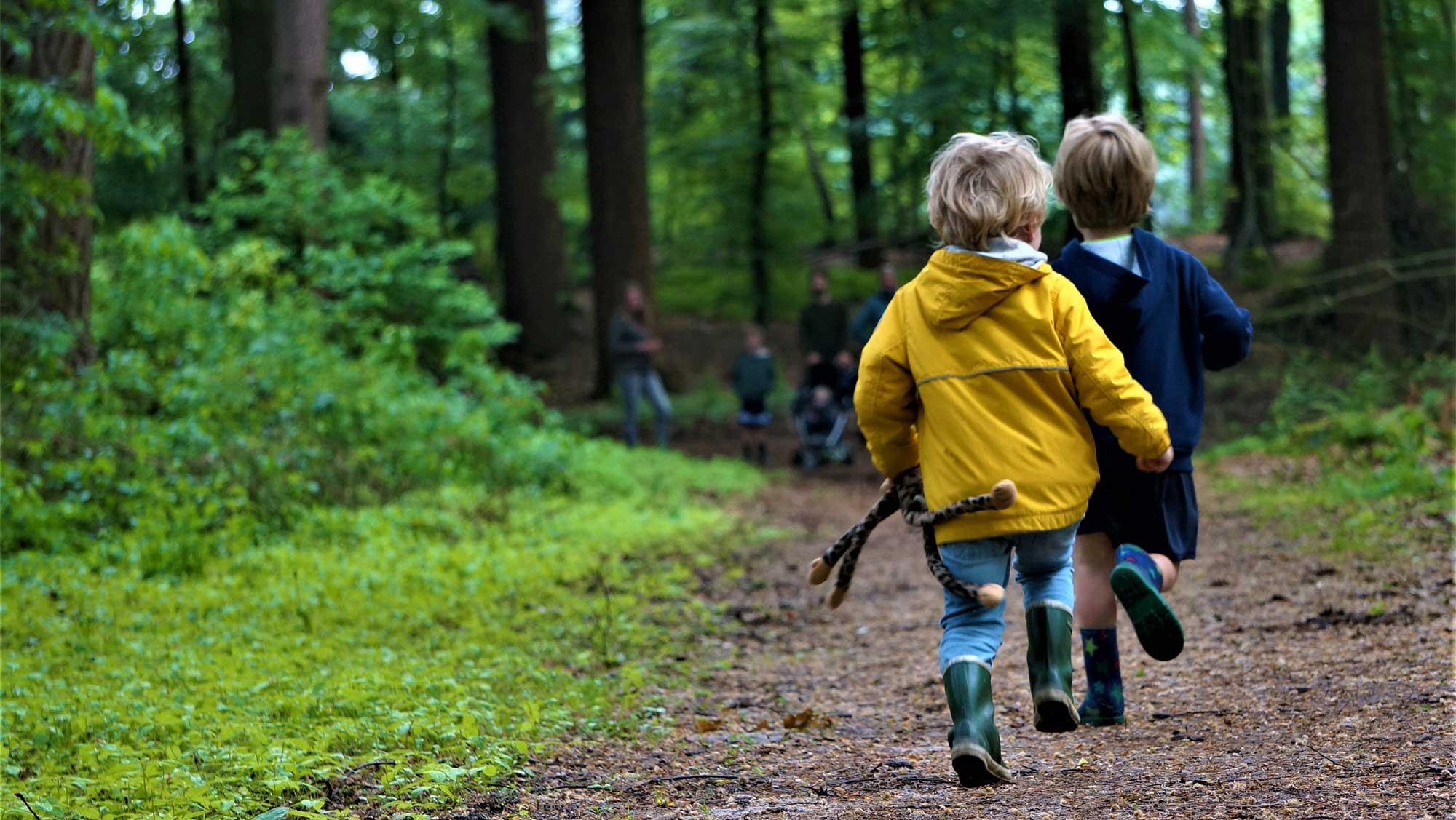 Omgeving Molecaten parken Hattem Heerde 01 wandelen