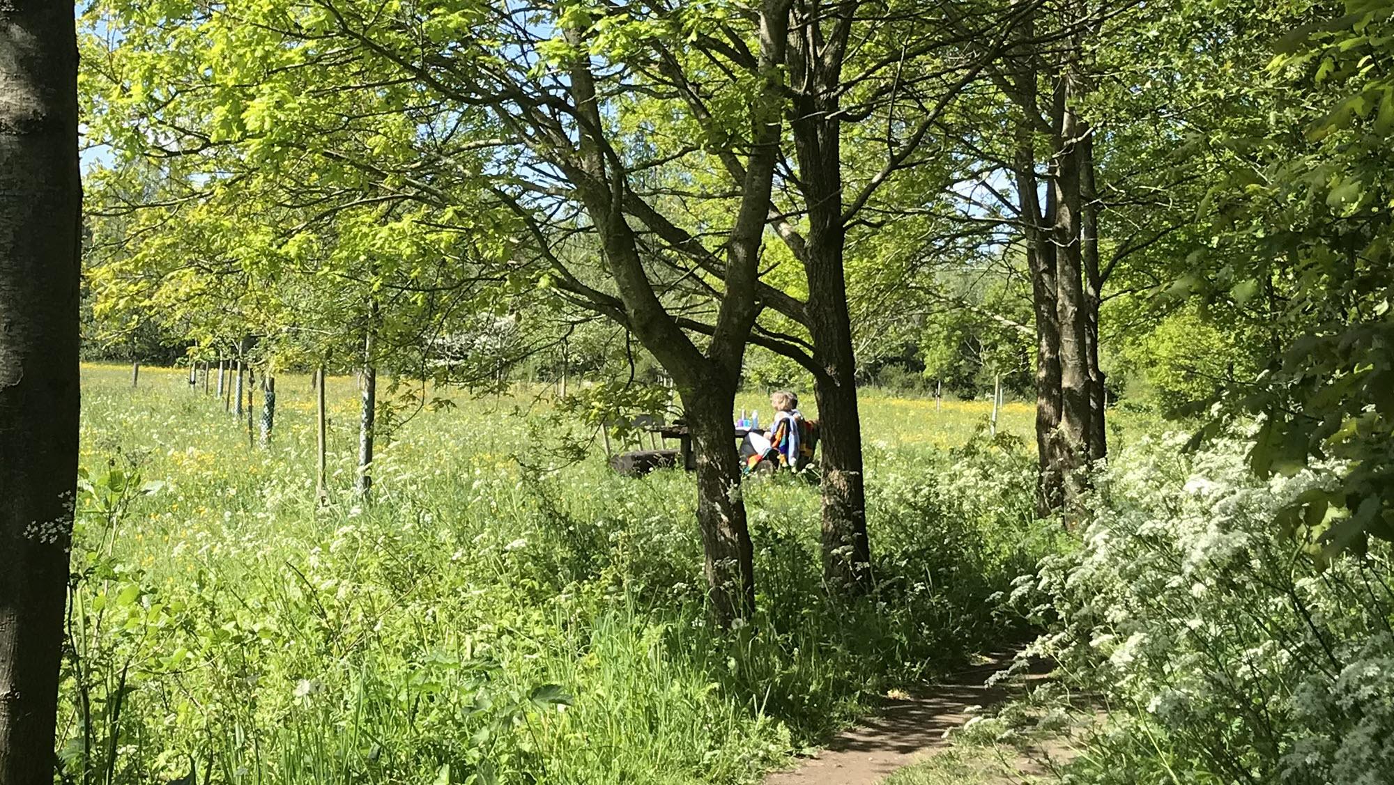 Picknick Windesheim IJsselvallei