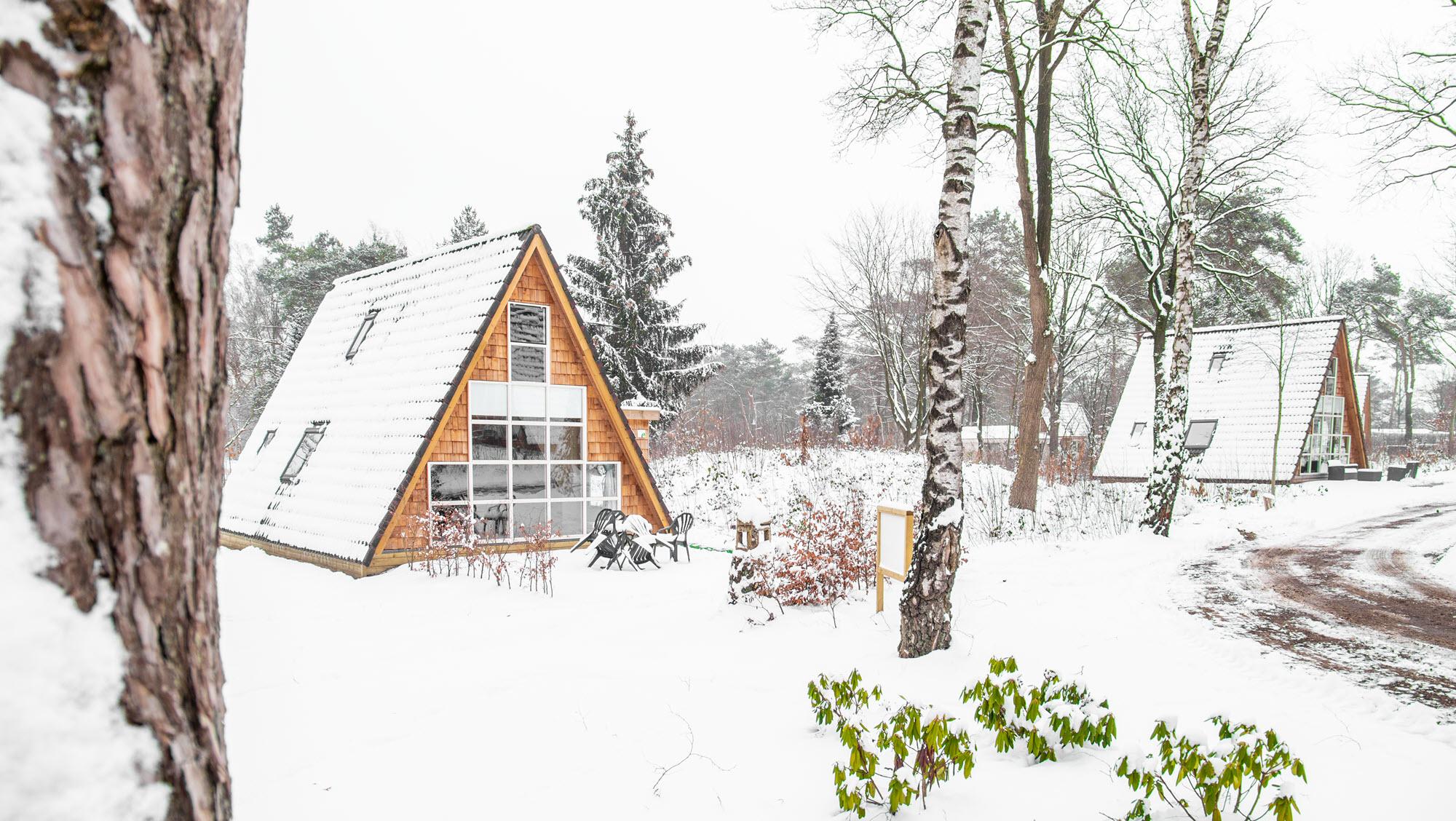 Molecaten winter in een bungalow in het bos 6