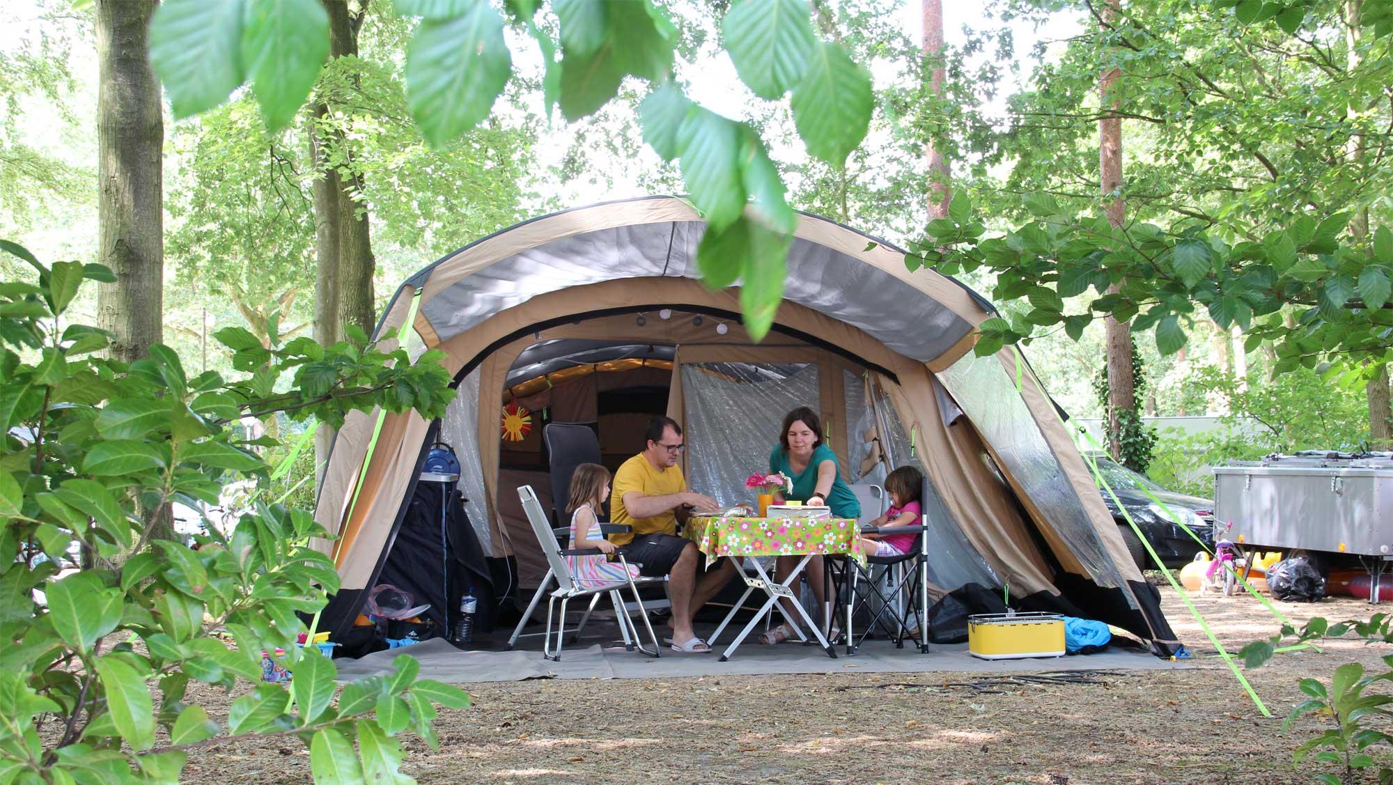 Molecaten Park Bosbad Hoeven 08 kamperen
